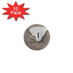 Quarter Of A Sand Dollar 10 Pack Mini Magnet (round) by Elanga