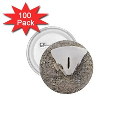 Quarter Of A Sand Dollar 100 Pack Small Button (round) by Elanga