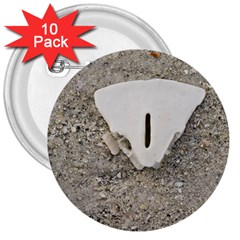 Quarter Of A Sand Dollar 10 Pack Large Button (round) by Elanga