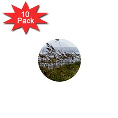 Cocoa Beach, Fl 10 Pack Mini Magnet (round) by Elanga