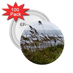 Cocoa Beach, Fl 100 Pack Regular Button (round) by Elanga