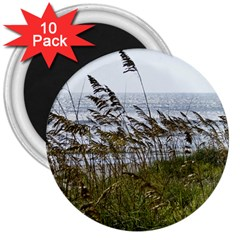 Cocoa Beach, Fl 10 Pack Large Magnet (round) by Elanga