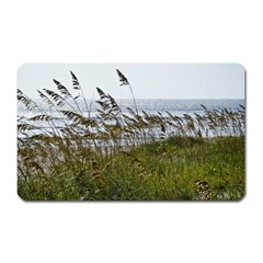 Cocoa Beach, Fl Large Sticker Magnet (rectangle) by Elanga