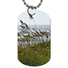 Cocoa Beach, Fl Twin Sided Dog Tag by Elanga