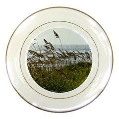 Cocoa Beach, Fl Porcelain Display Plate by Elanga