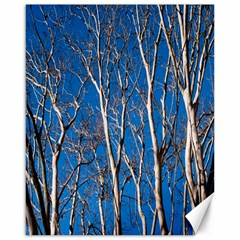 Trees On Blue Sky 16  X 20  Unframed Canvas Print