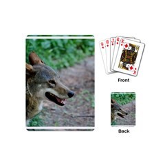 Red Wolf Playing Cards (mini)