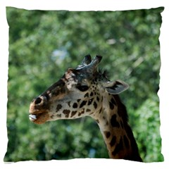 Cute Giraffe Large Cushion Case (two Sides) by AnimalLover