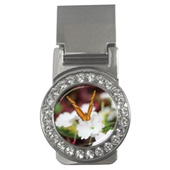 Butterfly 159 Money Clip (cz) by pictureperfectphotography