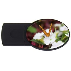 Butterfly 159 4gb Usb Flash Drive (oval) by pictureperfectphotography