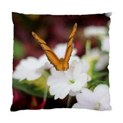 Butterfly 159 Cushion Case (two Sides) by pictureperfectphotography