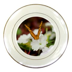Butterfly 159 Porcelain Display Plate by pictureperfectphotography