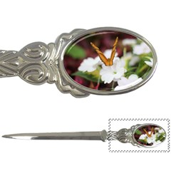 Butterfly 159 Letter Opener by pictureperfectphotography