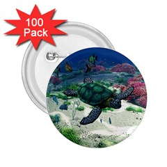 Sea Turtle 2 25  Button (100 Pack)