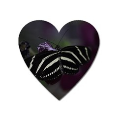 Butterfly 059 001 Magnet (heart) by pictureperfectphotography