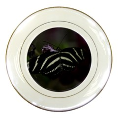 Butterfly 059 001 Porcelain Display Plate by pictureperfectphotography