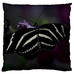 Butterfly 059 001 Large Cushion Case (one Side) by pictureperfectphotography