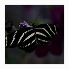 Butterfly 059 001 Glasses Cloth (medium, Two Sided) by pictureperfectphotography