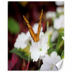 Butterfly 159 Canvas 11  X 14  9 (unframed) by pictureperfectphotography