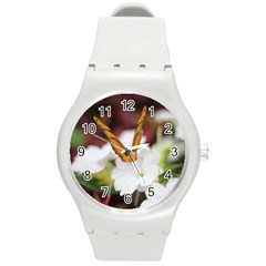 Butterfly 159 Plastic Sport Watch (medium) by pictureperfectphotography