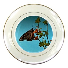 Monarch Butterfly Porcelain Display Plate by designsbyvee
