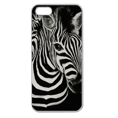 Zebra Apple Seamless Iphone 5 Case (clear) by cutepetshop
