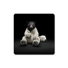 Bear In Mask Magnet (square)