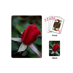 Sallys Flowers 032 001 Playing Cards (mini) by pictureperfectphotography