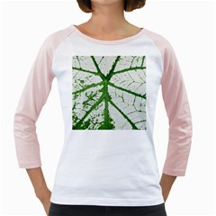 Leaf Patterns Womens  Long Sleeve Raglan T Shirt (white) by natureinmalaysia