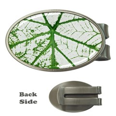 Leaf Patterns Money Clip (oval) by natureinmalaysia