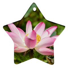 A Pink Lotus Star Ornament by natureinmalaysia