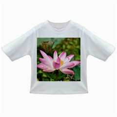 A Pink Lotus Baby T-shirt by natureinmalaysia