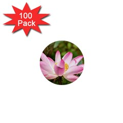 A Pink Lotus 1  Mini Button (100 Pack) by natureinmalaysia