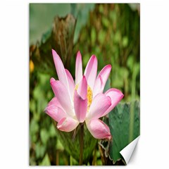 A Pink Lotus Canvas 12  X 18  (unframed)