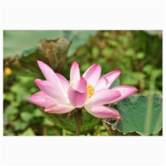 A Pink Lotus Canvas 20  X 30  (unframed) by natureinmalaysia
