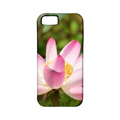 A Pink Lotus Apple Iphone 5 Classic Hardshell Case (pc+silicone) by natureinmalaysia