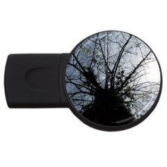 An Old Tree 2gb Usb Flash Drive (round) by natureinmalaysia
