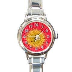 A Red Flower Round Italian Charm Watch by natureinmalaysia