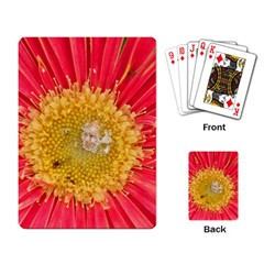 A Red Flower Playing Cards Single Design