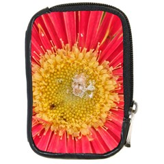 A Red Flower Compact Camera Leather Case