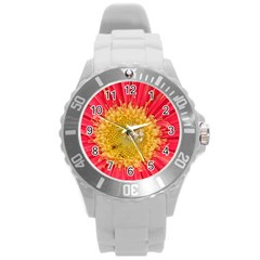 A Red Flower Plastic Sport Watch (large)