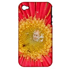 A Red Flower Apple Iphone 4/4s Hardshell Case (pc+silicone)