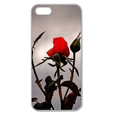 Red Rosebud On A Cloudy Overcast Day Apple Seamless Iphone 5 Case (clear) by designsbyvee