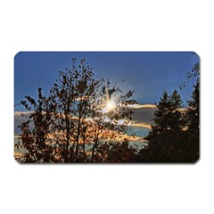 Early Morning Sun Through The Trees Magnet (rectangular) by designsbyvee
