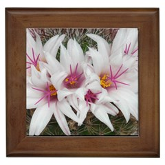 Bloom Cactus  Framed Ceramic Tile by ADIStyle