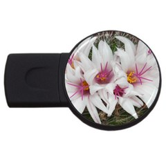 Bloom Cactus  2gb Usb Flash Drive (round)