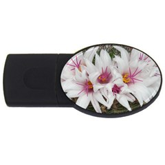 Bloom Cactus  4gb Usb Flash Drive (oval) by ADIStyle