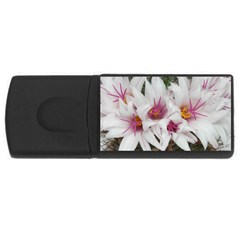 Bloom Cactus  4gb Usb Flash Drive (rectangle)