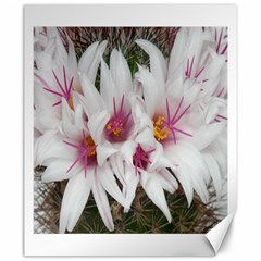 Bloom Cactus  Canvas 20  X 24  (unframed)