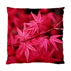 Red Autumn Cushion Case (one Side) by ADIStyle